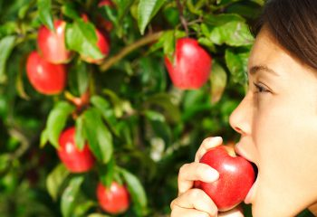 Woman eating apple in front of apple tree. Profile close-up of beautiful mixed race woman. Click for:
